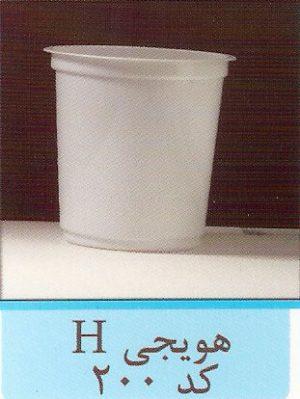 هویجی H کد 200